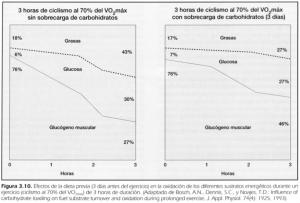 fisiologia-del-ejercicio-respuestas-y-adaptaciones-metabolicas-al-ejercicio-1