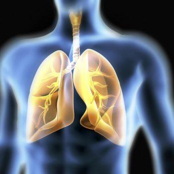 Adaptaciones respiratorias al ejercicio físico