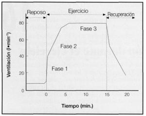 Fisiología del ejercicio. Respuestas y adaptaciones respiratorias al ejercicio físico