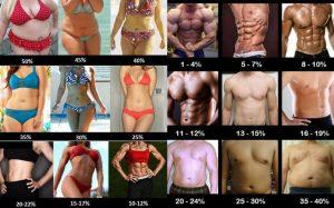 Calorías para perder peso o perder grasa